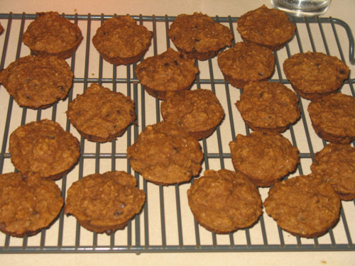 Mini Pumpkin Bran Muffins With Chocolate Chips