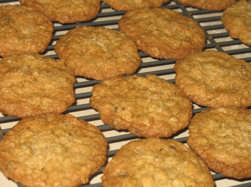 Coconut Oatmeal Cookies With Mini Chocolate Chips