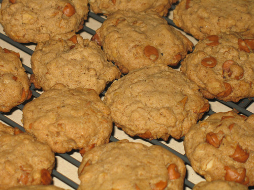 Cinnamon Chip Maple Oatmeal Cookies