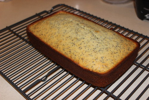 Meyer Lemon Poppy Seed Bread