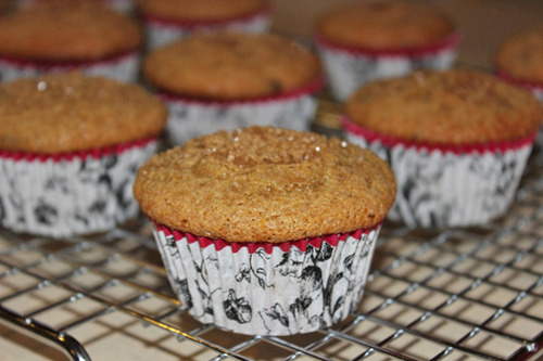 Greek Yogurt And Coffee Cappuccino Chip Muffins
