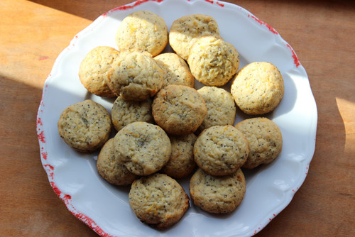 Meyer Lemon Poppy Seed Cookies