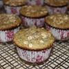 Meyer Lemon Poppy Seed Oatmeal Muffins