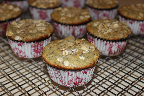 Meyer Lemon Poppy Seed Oatmeal Muffins
