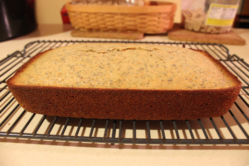 Blood Orange Poppy Seed Bread