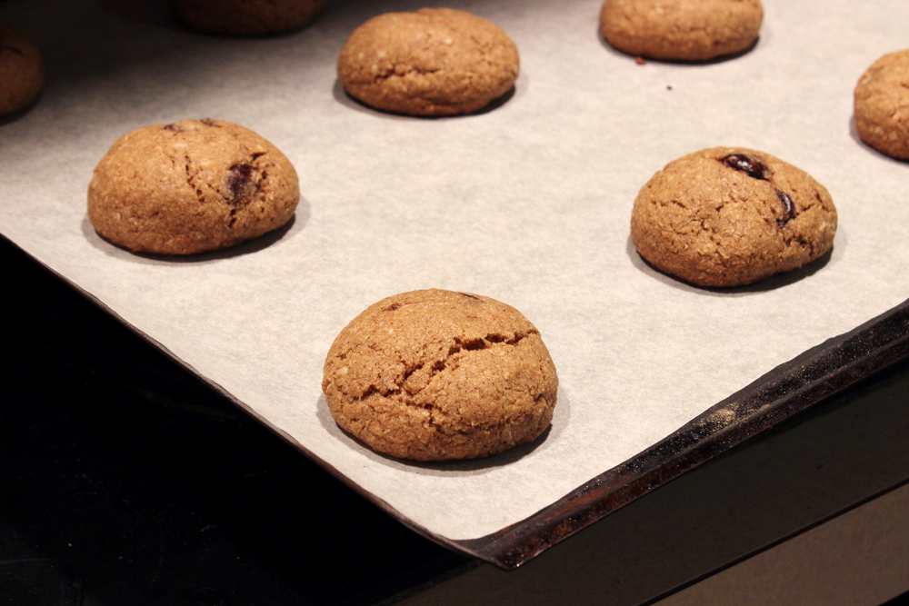 cookies-on-tray-round-baked