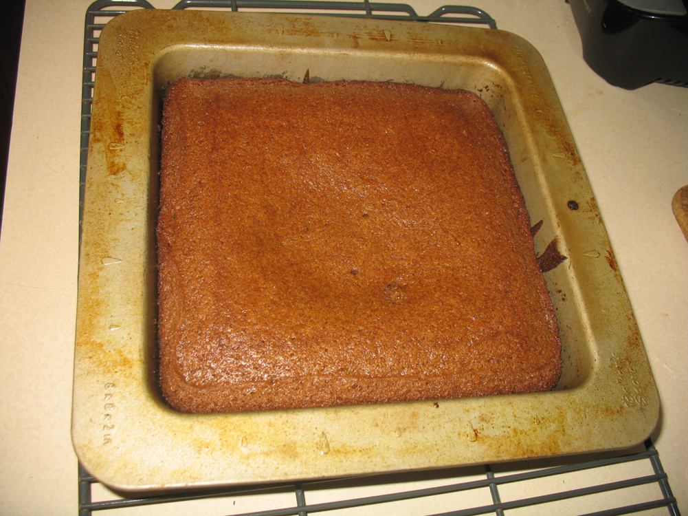 baked gingerbread cake in pan