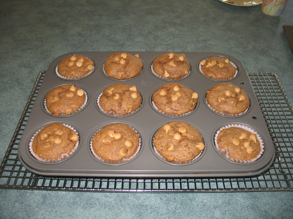 muffins in tin