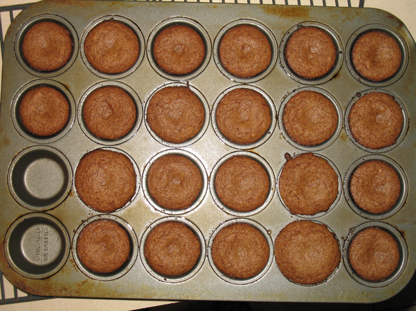 mini muffins in pan