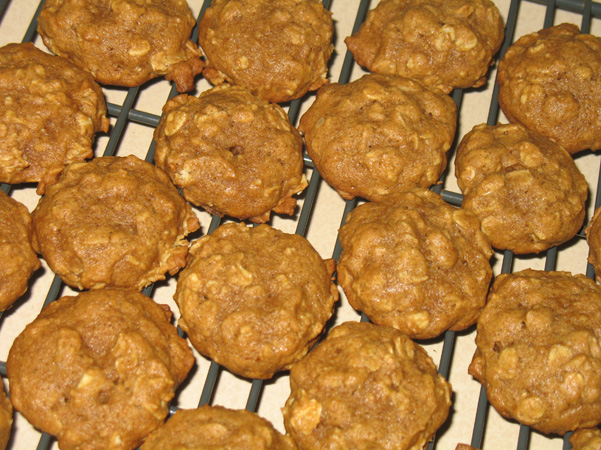 Speculoos Pumpkin Oatmeal Cookies - Baking Adventures In A ...