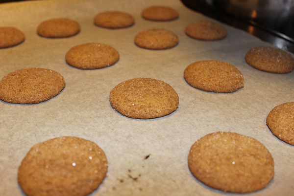 cookies cooling on tray