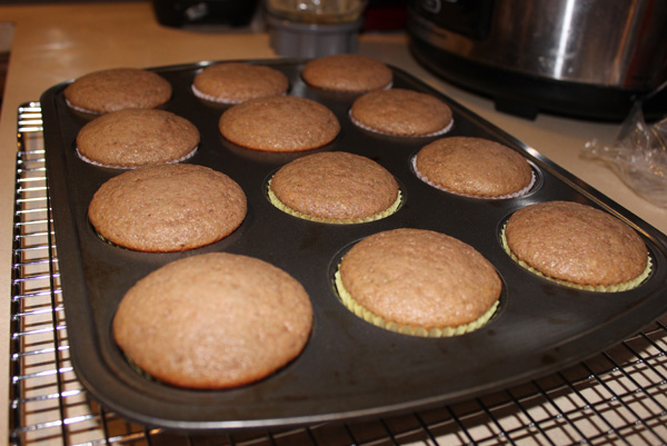 muffins in tray, baked