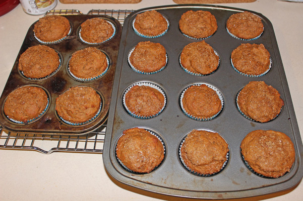 muffins in tin, fully baked