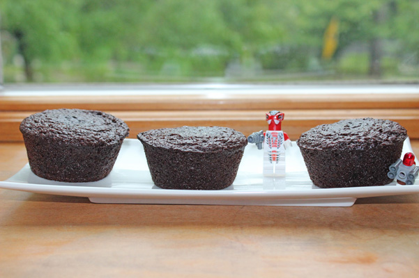 protected double chocolate chip muffins
