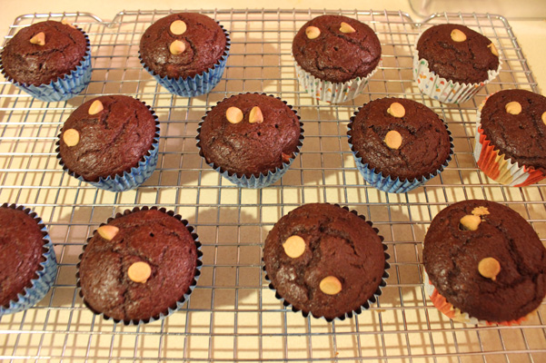 espresso muffins with peanut butter chips
