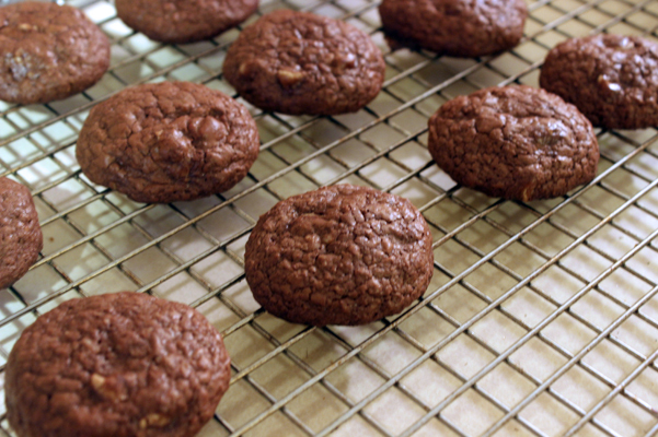chocolate coconut espresso cookies