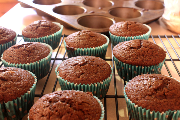 chocolate cupcake-muffins on rack